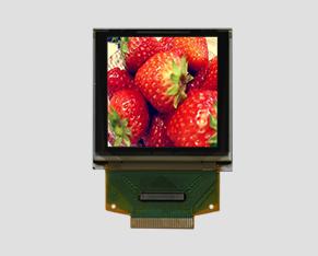 OLED液晶-JM-PO129-OL128128NPN015